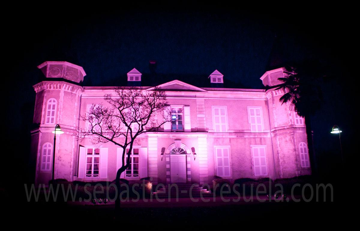Château De Franqueville - 64320 Bizanos